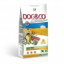 Hrana uscata pentru caini adulti de rase mici Dog&Co Wellness Adult Mini Chicken & Rice 7 kg(cu pui si orez)