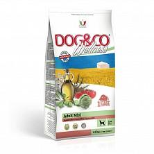Сухой корм для взрослых собак мелких пород Dog&Co Wellness Adult mini Lamb & Rise 7 kg.(с ягненком и рисом)