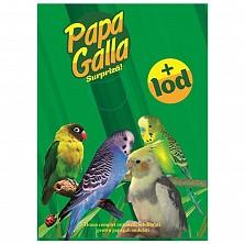 Hrana papagal PapaGalla + iod, 500g